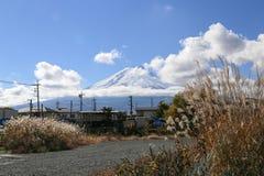 Cena bonita da montanha de fuji com a grama Imagem de Stock