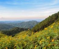 Cena bonita da natureza do nascer do sol da montanha Imagem de Stock Royalty Free
