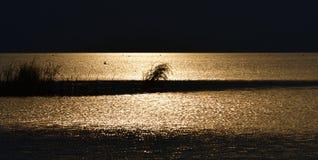 Cena bonita da noite do lago Fuxian Imagens de Stock