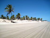 Cena bonita de uma praia tropical Imagem de Stock Royalty Free