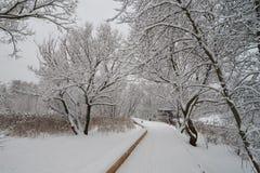 Cena bonita do inverno perto do rio de Yauza Fotos de Stock