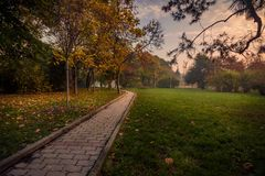 Cena bonita do outono na manhã no parque em uma aleia foto de stock