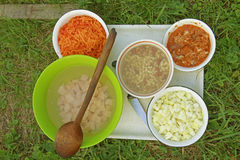 Cena che cucina su un fuoco aperto Immagini Stock Libere da Diritti