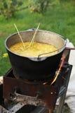 Cena che cucina sul fuoco nel giardino Immagini Stock Libere da Diritti