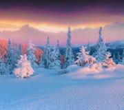 Cena colorida do inverno nas montanhas da altura Imagem de Stock
