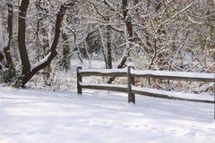 Cena com a cerca gelado após a tempestade da neve Fotografia de Stock Royalty Free