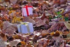 Cena com duas caixas de presente em uma floresta outonal colorida imagem de stock