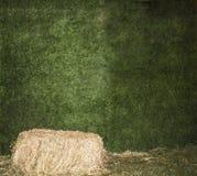 Cena com feno no prado Cenário bonito Uma pilha de feno Polia do feno Grama verde - fundo Feno em um fundo da GR Fotografia de Stock