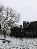 Cena com a neve do inverno que caem em uma única árvore e em um grande afloramento rochoso ou o pedregulho com o trajeto no oeste imagem de stock royalty free