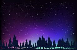 Cena com os pinheiros na noite ilustração stock
