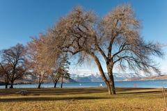 Cena da beleza do Rio Columbia em Washington Foto de Stock Royalty Free