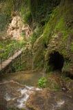 Cena da cachoeira do verão Imagens de Stock