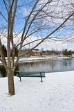 Cena da cidade do inverno com um banco perto da lagoa Fotos de Stock