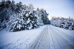 Cena da estrada no inverno Fotos de Stock