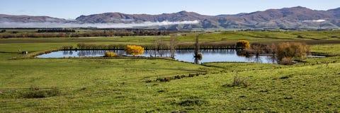 Cena da exploração agrícola do panorama, Otago central fotografia de stock