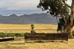 Cena da exploração agrícola em uma exploração agrícola do trigo Fotos de Stock Royalty Free