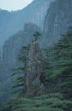 A cena da montanha amarela Imagens de Stock