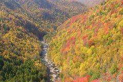 Cena da montanha do outono fotografia de stock