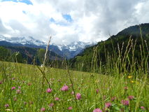 Cena da montanha em Garmisch, Alemanha Fotografia de Stock Royalty Free