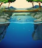 Cena da natureza com os peixes no rio ilustração do vetor