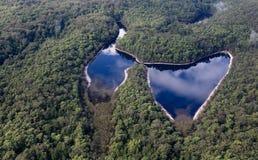 Cena da natureza de Fraser Island Australia fotografia de stock
