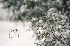 Cena da neve do inverno do feriado foto de stock royalty free