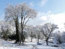Cena da neve do inverno na terra comum de Chorleywood, Hertfordshire, Reino Unido foto de stock