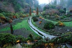 Cena da noite do jardim Foto de Stock Royalty Free