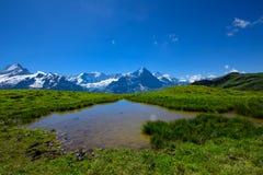 Cena da paisagem de primeiramente a Grindelwald, Bernese Oberland, Swi Imagens de Stock