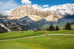 Cena da paisagem de primeiramente a Grindelwald, Bernese Oberland, Swi fotografia de stock royalty free