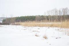 Cena da pesca do inverno no rio imagem de stock royalty free