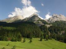 Cena da região selvagem de Grindelwal Imagens de Stock Royalty Free