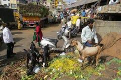 Cena da rua fora do mercado do KR, Bangalore Fotografia de Stock Royalty Free