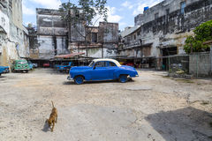 Cena da rua, Havana, Cuba #7 Imagens de Stock