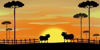 Cena da silhueta com as vacas na exploração agrícola ilustração do vetor