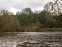 Cena da superfície superior do lago fora da obscuridade do outono nublado imagem de stock royalty free