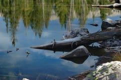 Cena das montanhas de Uinta - lagos foto de stock royalty free