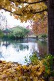 Cena de acalmação do outono Fotografia de Stock Royalty Free