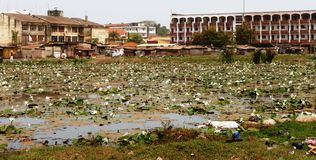 Cena de Guiné-Bissau Fotografia de Stock