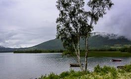 Cena de Serene Scandinavian Fjord Village Foto de Stock