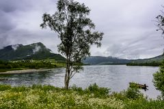 Cena de Serene Scandinavian Fjord Village Fotografia de Stock Royalty Free