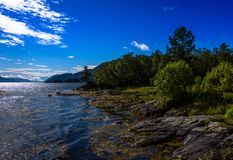 Cena de Serene Scandinavian Fjord Village Imagem de Stock Royalty Free