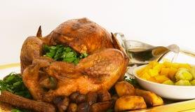 Cena de Turquía Imagen de archivo libre de regalías