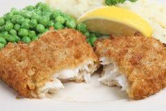 Cena dei pesci Immagini Stock