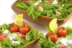Cena dell'insalata Fotografia Stock