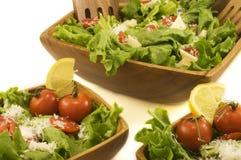 Cena dell'insalata Immagini Stock Libere da Diritti