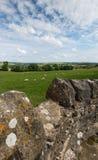 Cena do campo perto de Bakewell, Derbyshire foto de stock