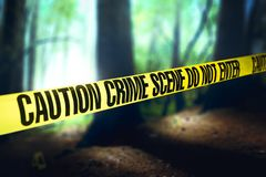 Cena do crime nas madeiras foto de stock