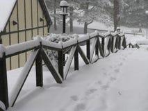 Cena do inverno - 1 Imagem de Stock