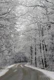 Cena do inverno imagem de stock royalty free
